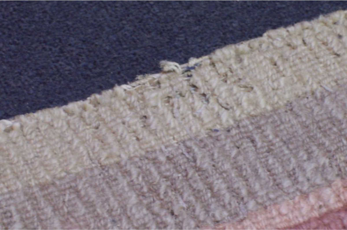 Gut bekannt Motten im Teppich? Biologische Abtötung & Bio-Schutz   Vorwerk Berlin CG99